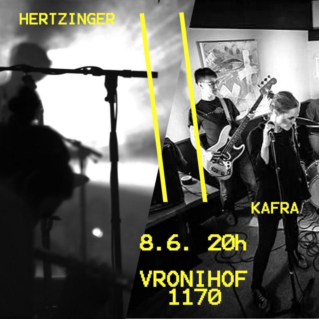 hertzinger kafra live square